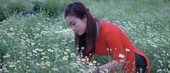 Beauty (khoitran1957) Tags: girl woman flower aodai vietnam beauty beautiful