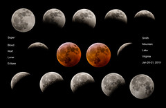 Lunar Eclipse 2019 Composite prnt 24 x 36 labeled (1 of 1) (photoman_Tom) Tags: 2019 bloodmoon lunareclipse moon supermoon wolfmoon