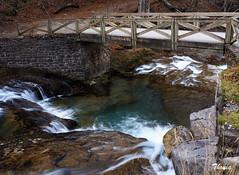 Parque Nacional de Ordesa (Gatodidi) Tags: parque nacional ordesa rio puente aragon huesca naturaleza natura bosque agua seda piedras arboles landscape paisatge paisaje valle cascadas gargantas monte perdido arazas