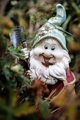 killer garden gnome (relaxedhothead) Tags: fuji xt2 xf 60mm lightroom gartenzwerg killer garden gnome