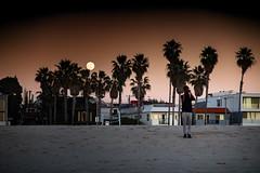 """Venice Beach Scene (El-Branden Brazil) Tags: """"los angeles"""" la """"venice beach"""" """"santa monica"""" california usa """"the united states"""" america beach sea sunset"""