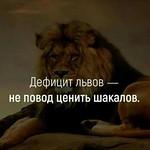 дефицит львов