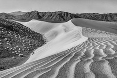 Sand Dunes Black and White 2015 (Jeff Sullivan (www.JeffSullivanPhotography.com)) Tags: sand dunes black white death valley national park deathvalley slot canyon nationalpark easternsierra california desert usa landscape photography canon eos 70d road trip jeff sullivan photo copyright november 2015 travel unitedstates on1pics
