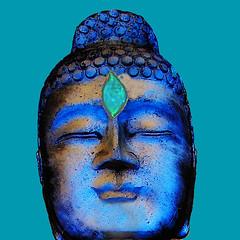 Don´t be blue Clear Your mind. (Marco Braun) Tags: buddha budhism buddismus chan seon meditation schwarz black weiss white blanche noire buddhasiddharthabouddhaboeddhabudagautama blau blue bleu shakyamuni fó zazen bianco kopf head tête будда बुद्ध 佛 仏陀 ブッダ ગૌતમબુદ્ ほとけ พระพุทธเจ้า