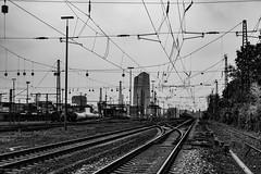 Frankfurt am Main... (hobbit68) Tags: fujifilm xt2 frankfurt schwarzweis blackwhite bahnstrecke bahngleise oberleitung züge wagons gebäude bank ezb baum trees