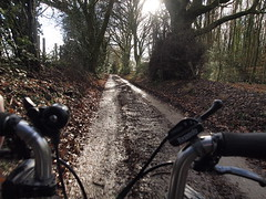 At the Top of Hogtrough Lane (cycle.nut66) Tags: hogtrough lane chiltern escarpment kingsash chilterns hills road winter light brompton m type bike cycle bicycle velo rower three speed trees sunlight low angle sun bright day olympus epl1 evolt micro four thirds mzuiko
