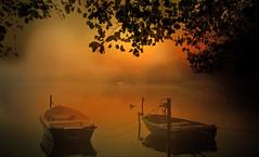 The magic dawn. (augustynbatko) Tags: dawn lake nature water boats tree leaves autumn sky mist fog
