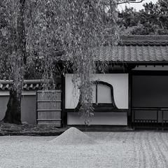 The zen garden (Tim Ravenscroft) Tags: garden gravel zen buddhist kodaiji kyoto japan hasselblad hasselbladx1d monochrome blackandwhite blackwhite