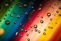 Rainbow Drops (Bauer Florian) Tags: sony ilce7rm2 fe 90mm f28 macro g oss rainbow drops makro wassertropfen
