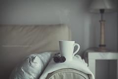 The coffee (Graella) Tags: homesweethome hogar home seasonsdiary taza cup coffee cafe coffeetime tea hot invierno winter hivern piñas lampara livingroom sofa sillon cojin manta 52semanas