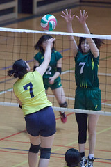 20180512_IMG_7244 (ko_en_volleyball_para) Tags: スポーツ sports バレーボール volleyball パラ para 聴覚障害 deaf the 18th national disabled competition hearing impaired area preliminary 2018 第18回 全国障害者スポーツ大会聴覚障害者バレーボール競技 地区予選大会 大田区体育館 otacity general gymnasium 栃木 tochigi 東京 tokyo