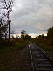 My favorite place (msergeevna) Tags: sky tree railway