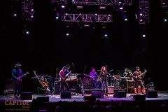 Edie Bickel and the New Bohemians 11.8.18 the cap photos by chad anderson-9245 (capitoltheatre) Tags: thecapitoltheatre capitoltheatre thecap ediebrickell newbohemians ediebrickellnewbohemians housephotographer portchester portchesterny livemusic
