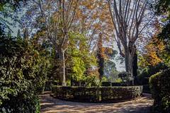 Giardino di una villa romana (giorgiorodano46) Tags: novembre2018 november 2018 giorgiorodano roma italy