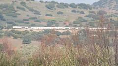 TORRE DEL ORO CERCA DE  VADOLLANO (FerrocarrildelBergantes) Tags: garcia lorca sevillano catalán torre del oro renfe talgo adif vadollano vilches andalucía