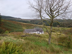 Brattleburn Bothy (Dylan John Bousfield) Tags: brattleburn bothy bothying kielder camping wild hiking walking country outdoor woods forest tree pine spruce cottage cabin hill dylan bousfield