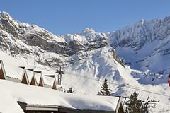 8E3A9711 (Philippe Latour/ Paris portrait-mariage) Tags: ski club gryon race course slalom