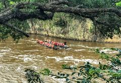 Canoe (simonmgc) Tags: canoe haruru maori paihia waitangi
