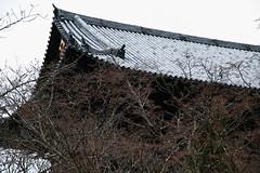 SDQ_1234 (koyaman3422) Tags: 京都 kyoto sigma sdquattro 1770mm 南禅寺