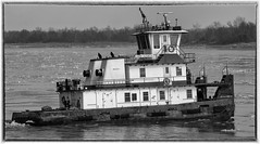 m/vCarrieElizabeth_SAF0304-3 (sara97) Tags: copyright©2019saraannefinke harborboat mvcarrieelizabeth mississippiriver missouri photobysaraannefinke pushboat saintlouis towboat