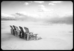 Snow swirls. (Nance Fleming) Tags: winter2019 lakeontario woodbinebeach sea sky beach water snow snowstorm wind windy snowsquall cloud
