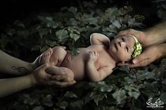 Winter baby #baby #babyphotography #babyphotographer #naturalmagic (maxjunkyard) Tags: baby babyphotography babyphotographer naturalmagic
