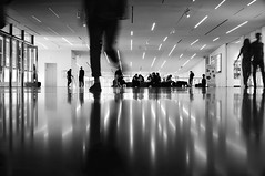 I'm on my way (PeterThoeny) Tags: sanfrancisco california sfmoma sanfranciscomuseumofmodernart museum person silhouette personsilhouette people ceiling blur motionblur reflection symmetry onepointperspective indoor monochrome blackandwhite sony a7 a7ii a7mii alpha7mii ilce7m2 fullframe vintagelens dreamlens canon50mmf095 canon 1xp raw photomatix hdr qualityhdr qualityhdrphotography fav200
