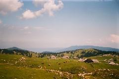 Velika Planina (szmenazsófi) Tags: smenasymbol lomo smena analog analogue film outdoor alps alpine field meadow cows slovenia nature green sky 35mm inexplore explored
