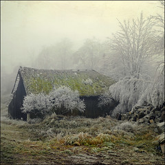 Winter (pixel_unikat) Tags: barn desolated abandoned ruin mühlviertel austria upperaustria hoarfrost nature winter cold