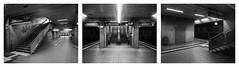 Lokalbahnhof mal drei (Christoph Schrief) Tags: frankfurtammain sbahnstationlokalbahnhof triptychon intrepid4x5ii schneidersuperangulon890 ilfordfp4 ilfordilfoteclc29 20° 119 8min stearmantank epsonperfection750 silverfast 4x5 largeformat grossformat selfdeveloped film analog bw sw