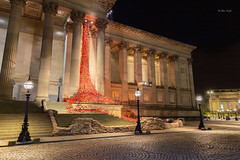 2015 Weeping Window Poppies, St George's Hall (davenewby123) Tags: stgeorgeshall liverpool nightscene publicdisplay parks landscape outdoor field shore serene merseyside irishsea longexposure clouds dusk heliopan vehicle water sea waterfront davenewby foliage plant 11112015amnestyday remembranceday weepingwindowpoppies weeping window georges hall blood swept lands protecteheritagesite architecture column colonnade building