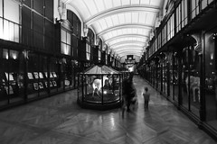 galerie de l'évolution (Rudy Pilarski) Tags: nikon nikkor 1020 d7100 urbain urban urbano gallery galerie nb bw bâtiment building monochrome old architecture architectura ancien perspective people personne mouvement graphique graphic paris france francia europe europa vitre vitrines