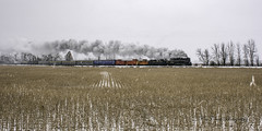 keeping ahead of the North Pole Express ~ Pere Marquette 1225 on its run between Owosso and Ashley (TAC.Photography) Tags: steamrailroadinginstitute steamtrain northpoleexpress beanfield farm farming country rural crops rows train railroad steam nikon nikoncamera tomclarknet tacphotography 2018yip peremarquette1225 puremichigan