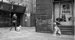 Untitled (HoustonHVAC170) Tags: black white monochrome street photo bilbao basque country