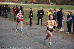 2018.11.10_CROSSCNTRY_WomensMens_VanCortlandtPark_JesiKelley-709 (psal_nycdoe) Tags: menscrosscountry nycpsal nycpsalsports nycsports newyorkcitypublicschoolsathleticleague psal2018crosscountry psal2018crosscountrychampionships psalcrosscountry teenagersplayingsports womenscrosscountry highschoolsports kidsplayingsports 201819 cross country psal public schools athletic league van 201819crosscountrycitychampionships xtry xcountry nycdoe new york city high school championships vancortlandtpark cortlandt jesi kelley jessica nyc newyorkcity newyork usa department education boys girls championship
