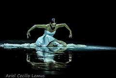 Clausura del 26 Festival Internacional de Ballet de La Habana (Ariel Cecilio Lemus) Tags: balet ballet foto reflejo detalle dance cultura