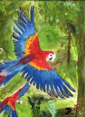 Flying Macaws finger painting (Dragongirl05) Tags: art painting acrylic colorful fingerpaint fingerpainted macaw bird parrot flying jungle tropical nature forest
