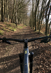 Forest trail - a good day for a bike ride. (mikeyashworth) Tags: mikeashworthcollection cycling mtb konabike washburnvalley yorkshire otley forest foresttrail path woods baretrees wintersun wintersday handlebars