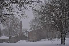 Lumi Rakveres (anuwintschalek) Tags: nikond7200 18140vr talv winter january eesti estland estonia rakvere lumi schnee snow 2019 lumesadu tuisk schneefall snowfall park tiik pond teich jää eis ice viinaköök korsten kamin schornstein chimney