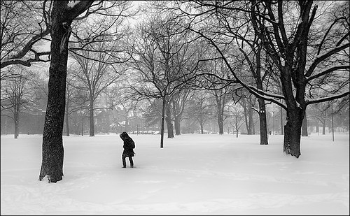 queens-park_snow_bw_dark-figure_01_8779840426_o
