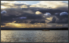 After the Rain Spring 2018 (itsallgoodamanda) Tags: amandarainphotography australia australianlandscape australianphotography australiassouthcoast shoalhaven seascape sea seaside southcoast stgeorgesbasin seascapephotography sky sunset sanctuarypoint sunsetphotography jervisbayphotography jervisbay photography photoborder peaceful itsallgoodamanda ocean spring2018 yacht coastallandscape coastal clouds coastline colourfullandscape coast calmocean cloudreflections colourfulsunset sunrays beforesunset boat landscape landscapephotography landscapecoast outdoor oceansunset