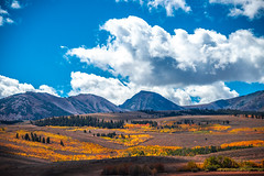 Conway Summit Conway Pass Nikon D810 & AF-S NIKKOR 28-300mm f/3.5-5.6G ED VR! Eastern Sierras Fall Foliage California Fall Color! High Sierras Autumn Aspens Red Orange Yellow Green Leaves! Elliot McGucken California Fine Art Landscape 8K 4K High Res! (45SURF Hero's Odyssey Mythology Landscapes & Godde) Tags: conway summit pass nikon d810 afs nikkor 28300mm f3556g ed vr eastern sierras fall foliage california color high autumn aspens red orange yellow green leaves elliot mcgucken fine art landscape 8k 4k res