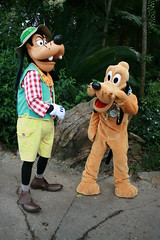 Goofy and Pluto (Steve Dawson.) Tags: disneys animalkingdom park baylake orlando florida usa holiday entrance goofy pluto characters wheredreamscometrue canoneos400ddigital canon eos 400d digital efs1855mmf3556 efs1855mm f3556 2nd april 2008