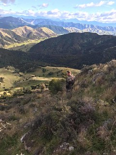 New Zealand Free Range Hunting - Marlborough 19