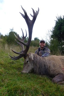 New Zealand Free Range Hunting - Marlborough 50