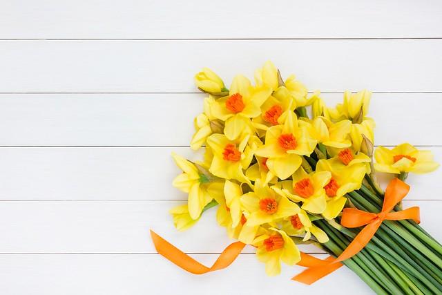 Обои цветы, букет, желтые, лента, yellow, flowers, нарциссы картинки на рабочий стол, раздел цветы - скачать