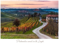 Piedmonte sunsets in the Langhe (Cristiano Busato) Tags: piemonte vino wine langhe piedmont sunset sunsets country countryside italy wonderfulitaly tramonto vigne grinzane grinzanecavour