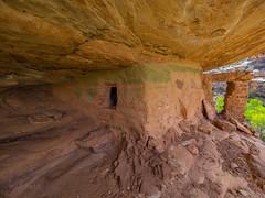 Green House (xjblue) Tags: 2018 southernutah utah desert spring anasazi ruin ancientruins green canyon rockart pictograph