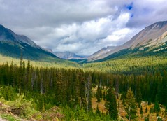 View from the Icefields Parkway in Alberta, Canada (lhboudreau) Tags: forest wood mountain tree sky grass field landscape mountainside rockies therockies canadianrockies icefieldsparkway albertacanada green shadow shadows