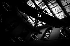 Volando contraluz (mgschiavon) Tags: blackandwhite blackwhite bw germany abstract madebyhumans